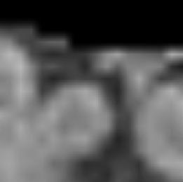 Few-shot 3D Multi-modal Medical Image Segmentation using Generative Adversarial Learning