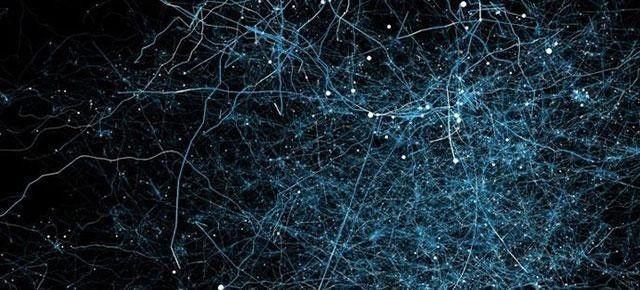 如何优化深度神经网络?