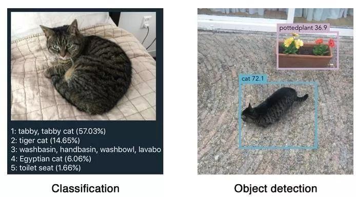 【推荐】YOLO实时目标检测(6fps)