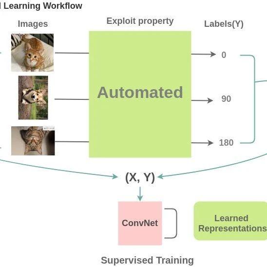 100+篇《自监督学习(Self-Supervised Learning)》论文最新合集