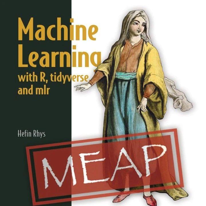 【Manning2020新书】R/mlr机器学习,513页pdf,Machine Learning with R